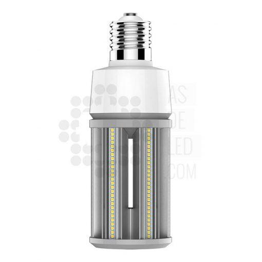 Comprar bombilla LED para farola - BF36SK28GK55 - Bombilla retrofit vial